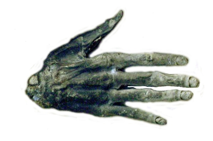 Hand+of+Glory+-+Whitby+Museum